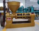 Máquina 500kgs da imprensa de petróleo de Guangxin do preço do competidor por a hora Yzyx140cjgx