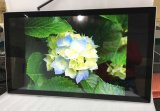 32-Inch Wall Mounted LCD Panel Touch Screen Monitor All in One Touchscreen