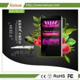 LED de légumes hydroponiques Keisue ménage ferme verticale