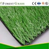 Deportes campo de fútbol de césped artificial de alta calidad (SE).