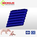 Bester Verkaufs-Fußboden für Schwein-Ziege-Latte Using Plastik