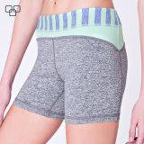 2017 pantaloni di scarsità correnti all'ingrosso asciugano gli Shorts di sport di forma fisica per le donne