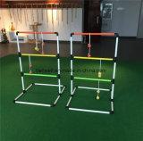 Напольный комплект игры Toss гольфа трапа PVC