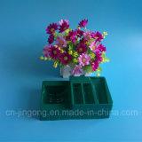 Het donkergroene Dienblad van de Blaar van het Huisdier voor Kosmetische Producten Geplaatst het Plastic Dienblad van de Blaar