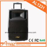 Verkaufsschlager 12 Zoll-Karaoke-Laufkatze-Lautsprecher mit Mikrofon