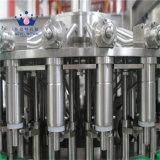 완전한 주스 생산 라인을%s 자동적인 과일 주스 충전물 기계