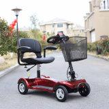 고품질 대중적인 250W 먼지 자전거 소형 전기 기관자전차