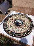 Padrão de mármore marítimas medalhões padrão marítimas para azulejos de mármore