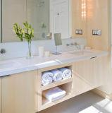 Silestone quartz haut de la vanité de Pierre avec le Cabinet pour salle de bains