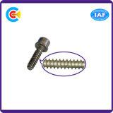 DIN/ANSI/BS/JIS Carbon-Steel/Stainless-Steel Hexágono com Cabeça de Parafuso Autoatarraxante Britânico