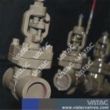 Cl800 ASTM A105 ha forgiato la valvola a saracinesca
