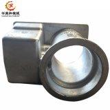 L'acciaio/acciaio legato/sabbia di alluminio/del ferro il pezzo fuso del metallo del pezzo fuso di precisione dell'acciaio inossidabile della pressofusione