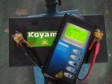 beginnende Batterij van de 31t-100012V 100ah de Hoge CCA Op zwaar werk berekende Auto
