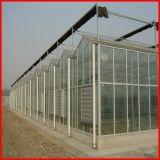 Serre van de Tuin van het Glas van de Spanwijdte van China Agricluture de Multi voor Verkoop