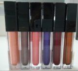 De uitstekende kwaliteit glanst Privé Etiket van de Lipgloss van de Steen Matellic het Vloeibare