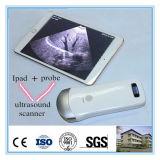 Abdomen/matériel portatif de diagnostic ultrason de Msk/WiFi vasculaire d'utilisation