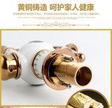De nieuwe Tapkraan van het Bassin van het Ontwerp Chinese Ceramische (zf-606)