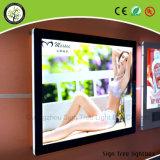 고품질 분명히되는 Slimline 액자 LED 가벼운 상자 광고