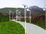 3m 7W LEDの公園のための太陽通りの庭ライト