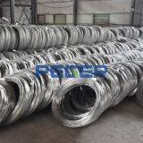 Hot de feux de croisement de 0,13 mm en acier galvanisé Fil/fil de fer/matériaux Scourer fil