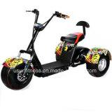 Triciclo elétrico de Harley Citycoco com o motor do eixo 1000W