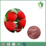 Rode Myricetin van uitstekende kwaliteit van het Uittreksel Bayberry 80% 98%