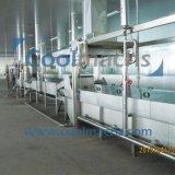 O pré-tratamento de frutas e vegetais industriais de transformação da linha de produção