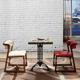 Los muebles del restaurante de la manera fijaron con la silla de madera y el vector retro (SP-CT786) del marco