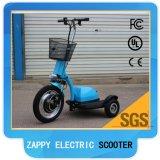 Scooter électrique 48V 500W de mobilité de roue du lecteur trois de roue avant