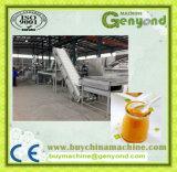 Haute efficacité de la confiture de mangue Ligne de traitement