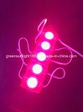 多くの年の経験LEDライト農産物