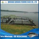 栽培漁業タンク、イズミダイのための熱い販売の魚のケージ