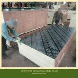 La película hizo frente a la madera contrachapada para la construcción para el mercado de Omán