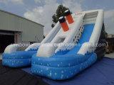Diapositiva de agua inflable de la venta caliente con la piscina/la diapositiva de agua inflable del carril del doble del agua (RB7013)