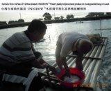 Повышение качества воды для акватического Breeding