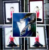Boîte à lumière en cristal à LED suspendue à câble pour afficheurs de vitrines Salon