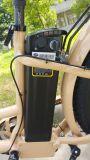En15194 판매를 위한 승인되는 여자 바닷가 함 리튬 건전지 전기 자전거