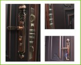 Projetos da porta exterior do cano principal do ferro da segurança com o punho de porta do metal