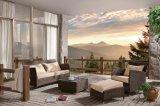 Установленная софа салона Панамы офиса гостиницы Wicker напольного ротанга патио Wicker домашняя (J631)