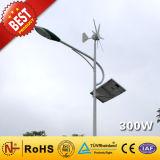 200W+100Вт Ce Approvedv гибридный генератор солнечной энергии ветра для светодиодного Streetlight (300 Вт)