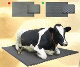 Nattes en caoutchouc de couvre-tapis de vache à dessus de configuration de caillou de prix usine