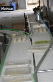 Überlegene Hygiene-Stufen-modularer Plastikbandförderer mit guter Qualität