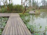 Внешнее Environmental Friendly Waterproof WPC Decking (decking WPC)
