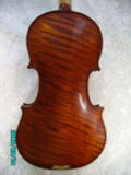 Violino (JAV006)