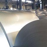 Катушка покрынная цинком стальная для листов толя