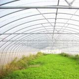 Pre-Galvanized Greenhouse Pipe Auf Lager