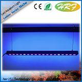 LEIDENE van de Prestaties van de Chinese Verse/Zoute het Tank Gebruikte LEIDENE Verlichting 120W 4feet van het Aquarium Hoge Licht van het Aquarium