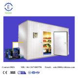 Stanza del congelatore ad aria compressa per il pollo, porco, carne del manzo