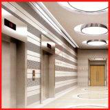 Hochgeschwindigkeitsmaschinen-Raum weniger Gebäude-Höhenruder/Passagier-Aufzug