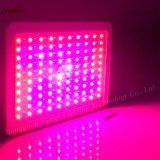 LED de alta potencia deluz crecer con 300W 100PCS fichas